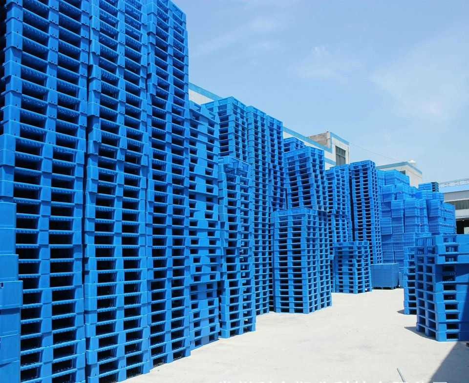 Công ty sản xuất pallet nhựa nguyên sinh mới - Chi tiết pallet nhựa từ A -> Z, Khi mua bán cần biết