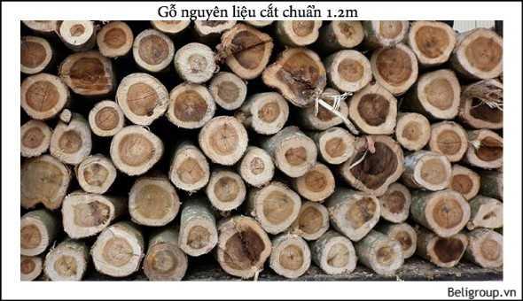 gỗ nguyên liệu cắt 1.2 m - Bộ sưu tập hình ảnh pallet nhựa - pallet gỗ
