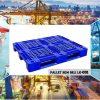 Pallet nhựa dùng cho xuất khẩu ở tp.HCM