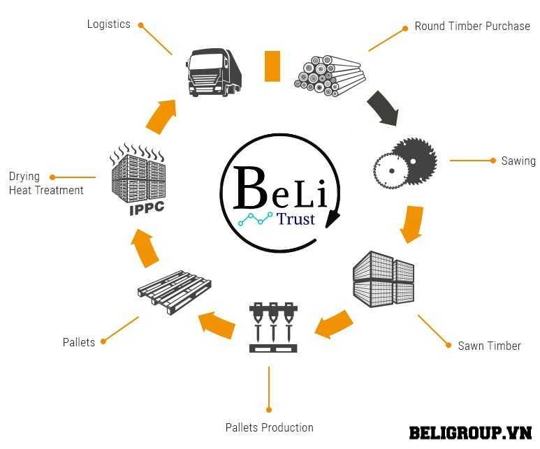 Quy trình sản xuất pallet gỗ giá tốt của công ty beli Group