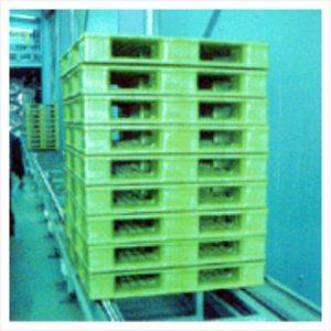 chuyển các pallet nhựa beli 2m trên hệ thống tự động