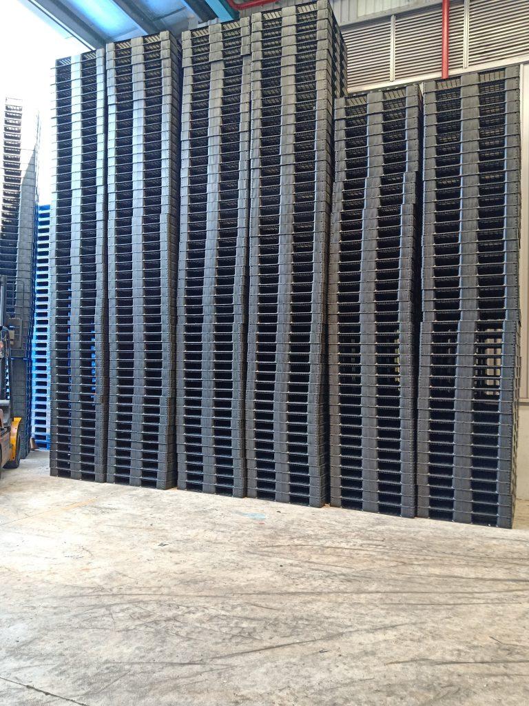 kho pallet nhựa tại bình dương 768x1024 - Bộ sưu tập hình ảnh pallet nhựa - pallet gỗ