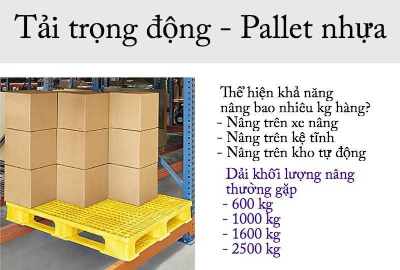 tải trọng động pallet nhựa thường gặp